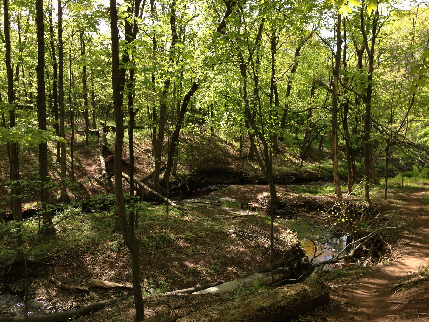 2013-05-05_09_31_59_View_of_a_meander_in
