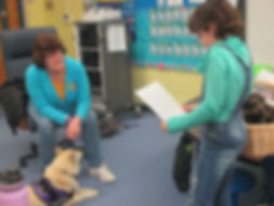 A third grade girl is reading a report to a therapy dog and handler.