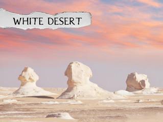 Icebergs or Egypt's White Desert?