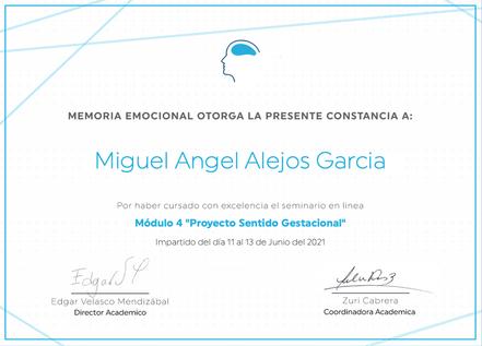 Constancia Memoria Emocional Proyecto Sentido