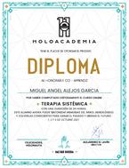 Diploma Holoacademia.png