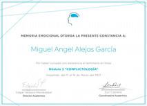 Constancia Memoria Emocional Conflictología