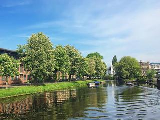 Mijn onderzoeksplan in Nederland