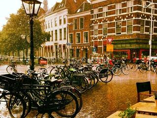 Waarom leer ik Nederlands?