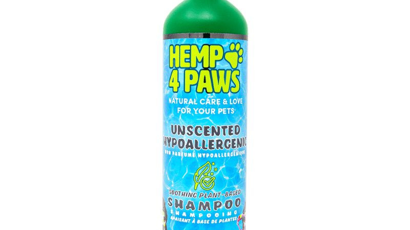 Unscented Hypoallergenic Shampoo