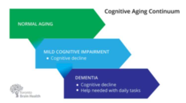 Cognitive Aging Continuum