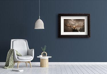 framed_falcon_wings_A2.jpg