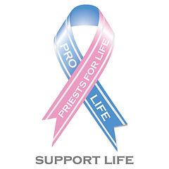 prolife_pfl_supportlife-123.jpg