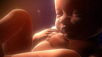 baby-in-womb.jpg