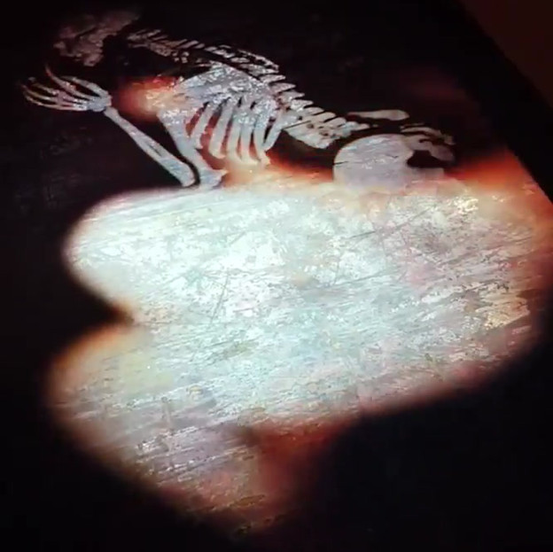 video skeleton.mp4