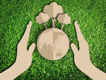 Влияние сбора макулатуры на экологию