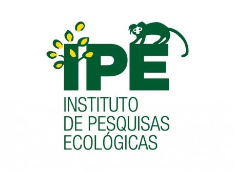 IPE.jpg