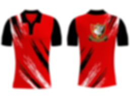 2020 County Shirt.jpg