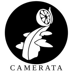 CAMERATA LARANJEIRAS