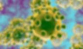 HERO_coronavirus-730x430.jpg