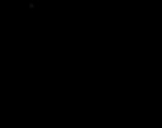 NNW-logo-BIG-.png