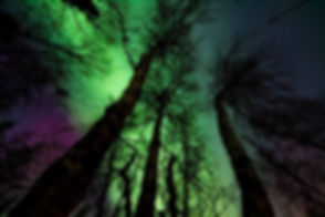 aurora-borealis-dark-low-angle-photograp