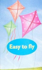 Nylon Kite with Storage Bag