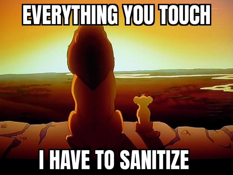sanitize 009.jpg