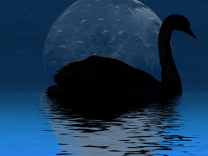 Mondschwan