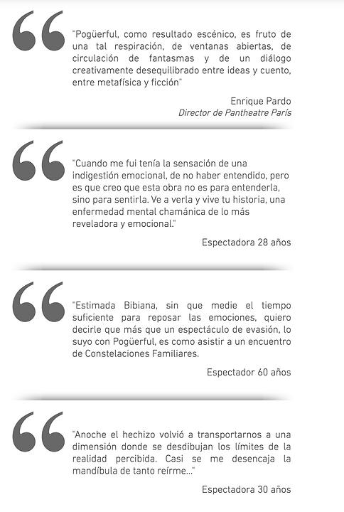 criticas web.png