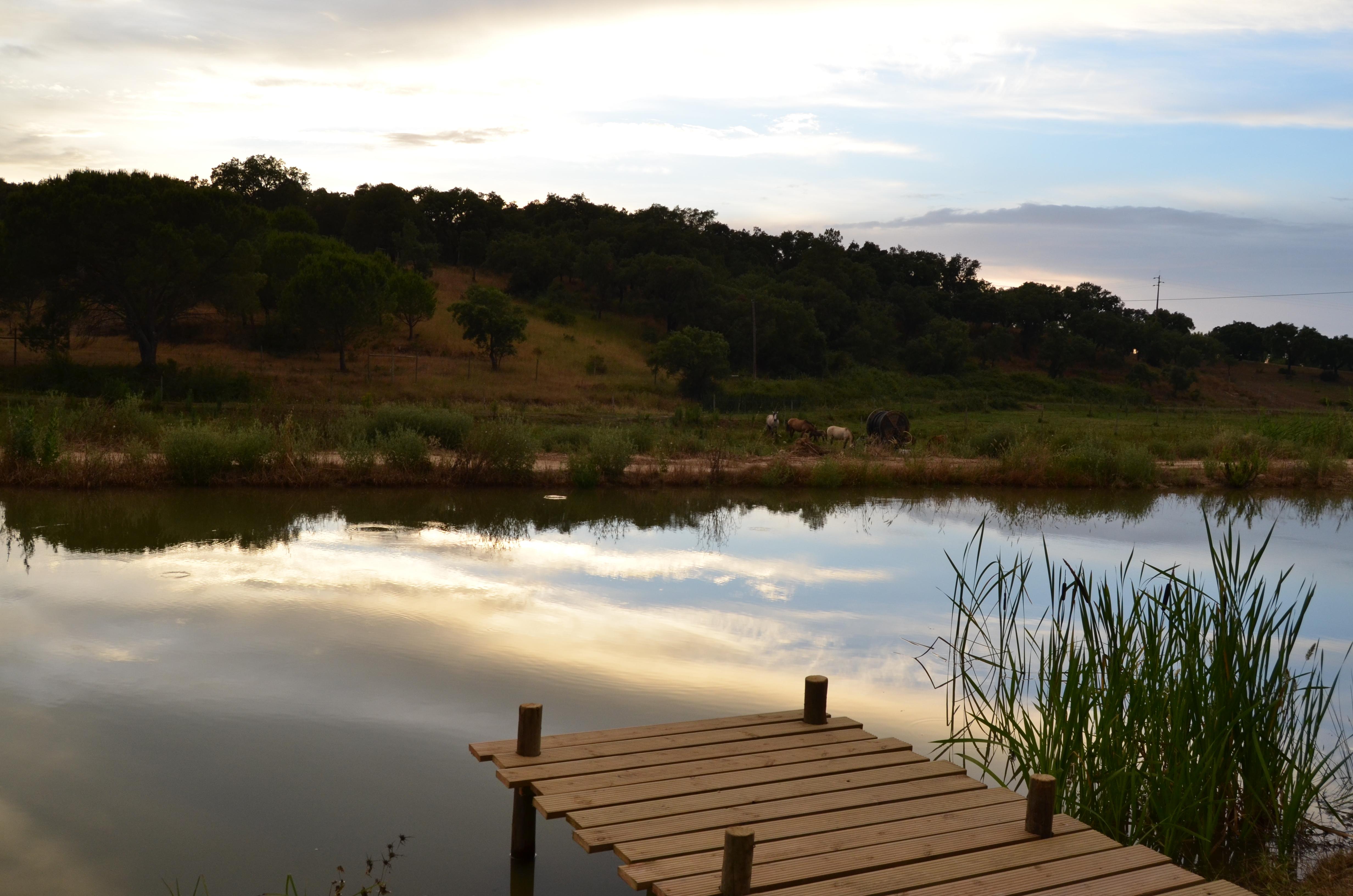 lago 2.JPG