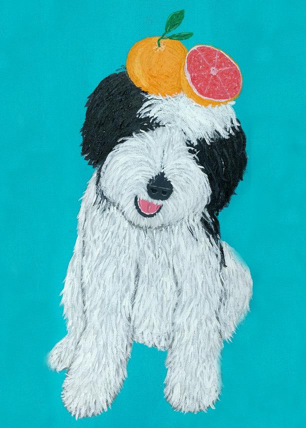 Gus: Grapefruit