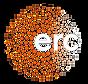 LOGO-ERC_negatif_edited_edited.png