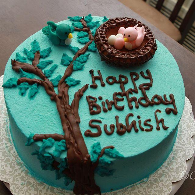 #cakes #birthdaycakes #birthdaycake #njcakes #southbrunswick #naturecake #treecake #birdnestcake #bu