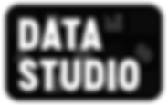 DS_Logo.png.png