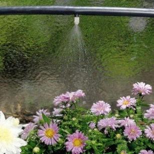 полив дождеванием, капельный полив, теплицы, москва, botanik, гритстрой, gritstroi.com, оранжерея