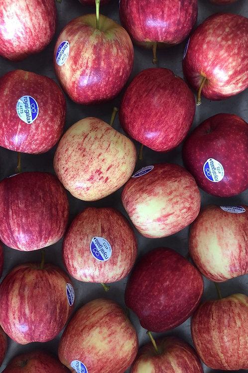 NZ Gala Apple 1kg
