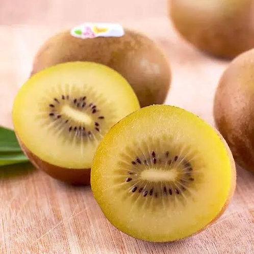Gold kiwi fruit 1 box (6kgJumbo size)