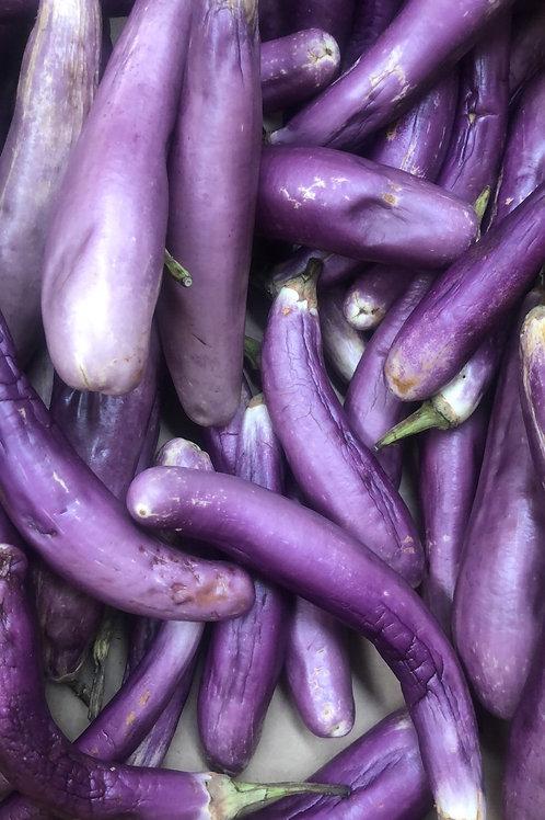 Feiji eggplant kg