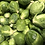 Thumbnail: Brussel Sprout 500g