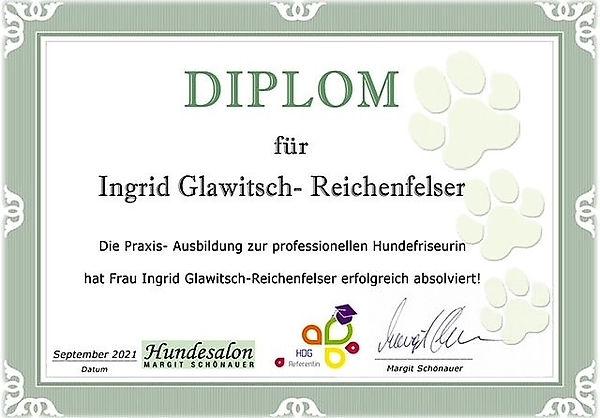 Diplom Groomer