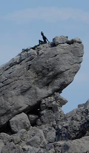 29 silhouet op rots.png