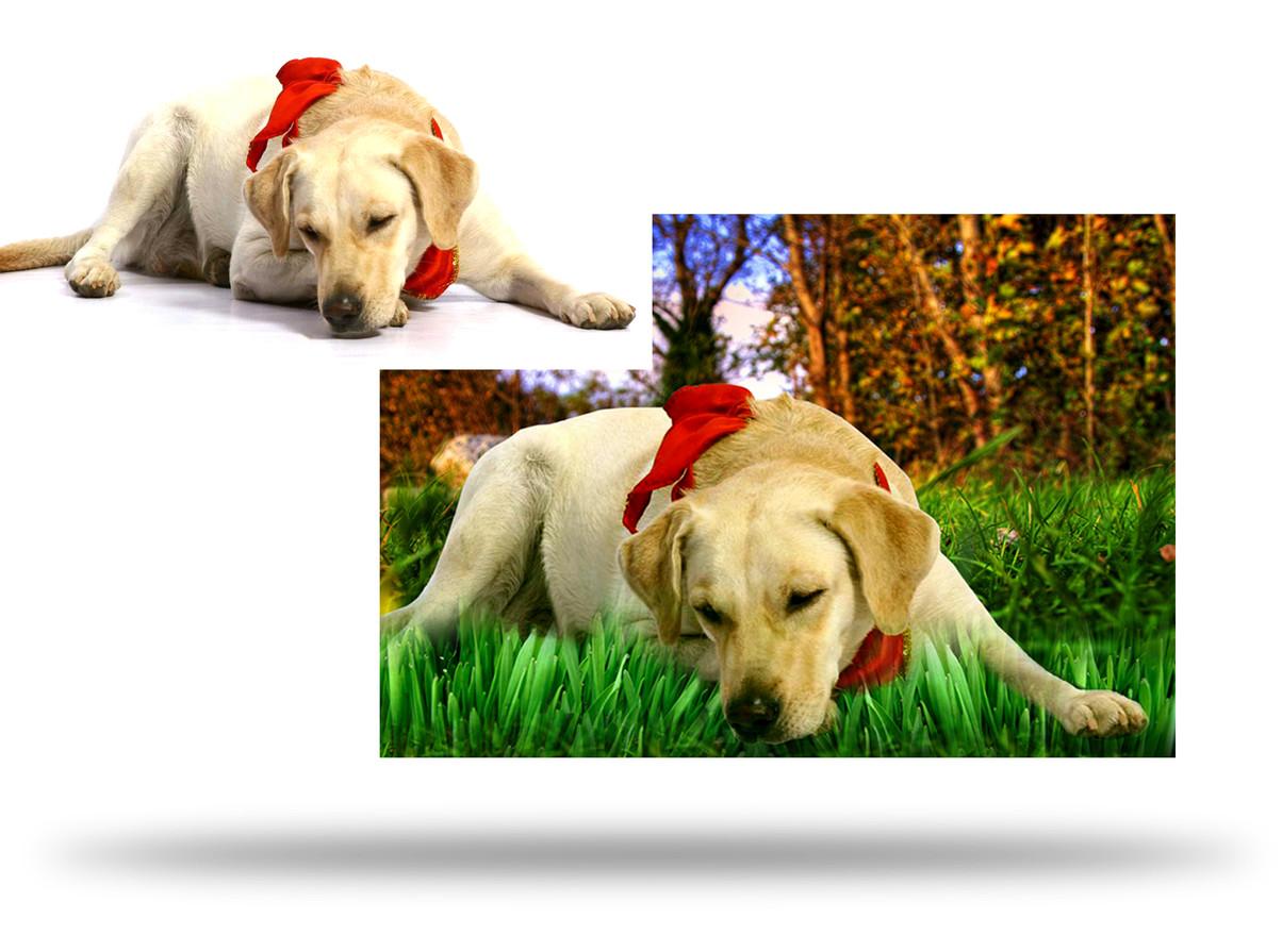 photo-retouching.jpg