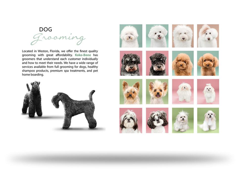 editorial_designs2.jpg