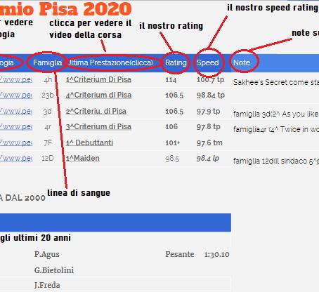 """""""Verso il Premio Pisa"""""""