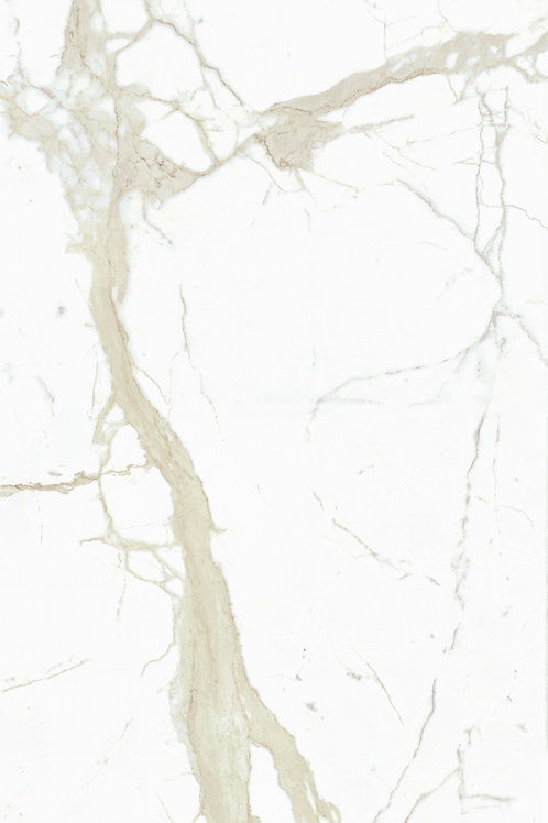 White Calacatta Bookmatched
