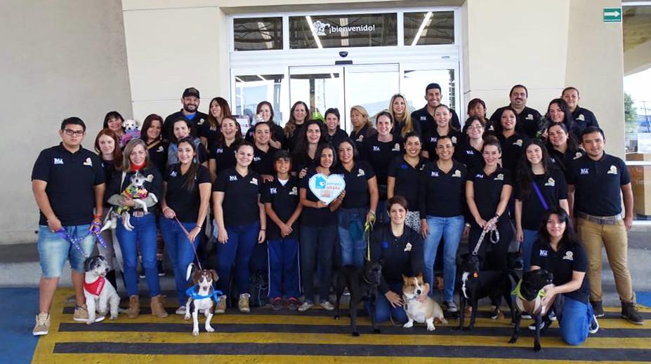 Voluntarios asociacion de rescate animal Adoptando un amigo