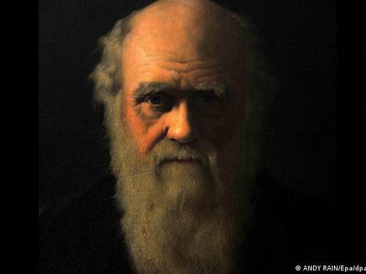 """إرث داروين - 150 عاما على كتاب """"نشأة الإنسان والانتقاء الجنسي، داروين عربيًا."""