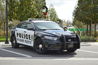 pc pd car .png