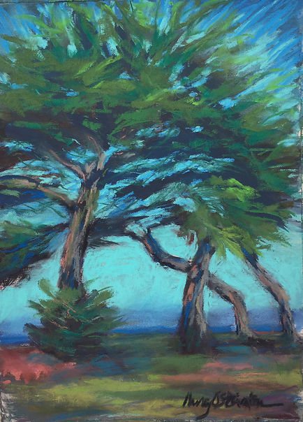 Lovers Point Trees.jpg