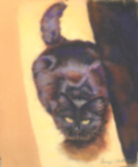 Pastel | cat
