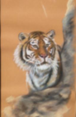 Pastel | Tiger