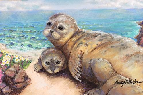 Harbor Seals Canvas Print