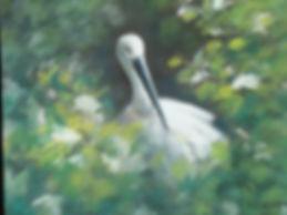 Pastel | Swan