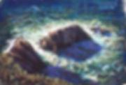 North of Big Sur.jpg